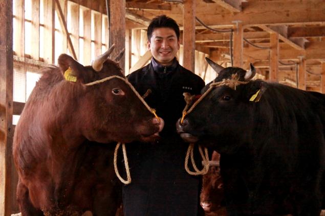 短角牛と米沢牛