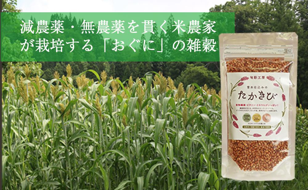 雑穀たかきび