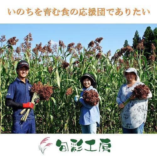 つまむ穀つぶ グリッシーニ(たかきび)|旬彩工房