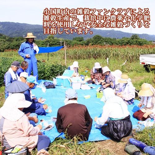たかきびうどん(赤い乾麺)×3個セット ネコポス送料無料