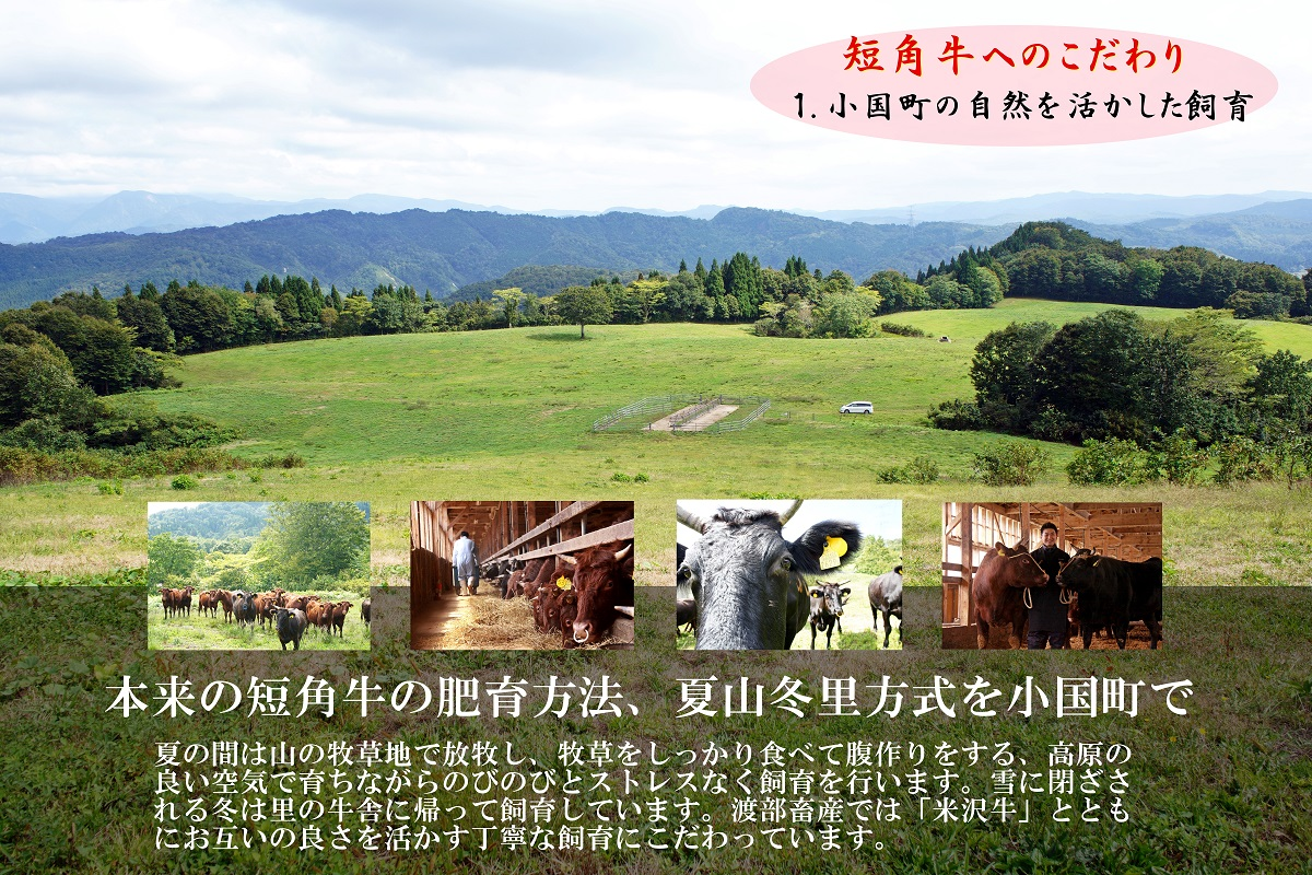 国産和牛 山形県産 小国産 短角牛(たんかくぎゅう)入り ソーセージ小サイズ4本入(120g)×6袋(合計約720g)