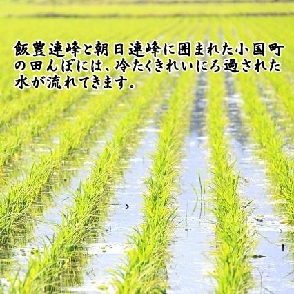 小国のお米【はえぬき】5kg
